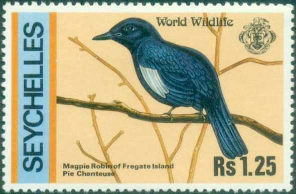 Magpie robin on Seychelles stamp, Wildlife in Seychelles