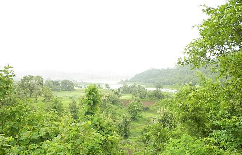 Shoolpaneshwar Wildlife Sanctuary