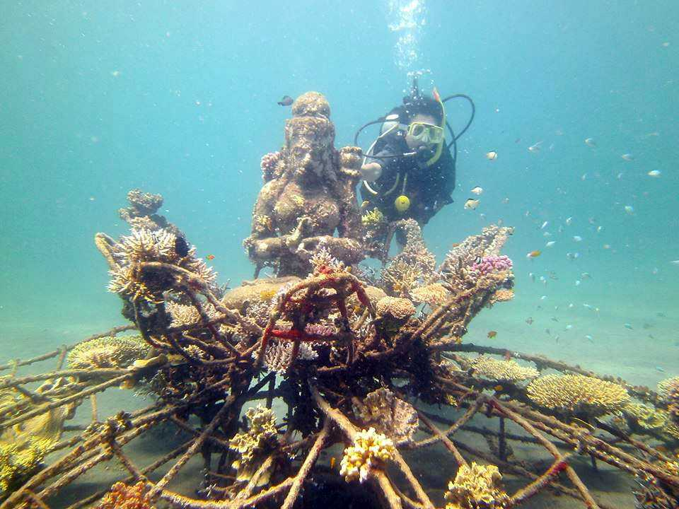 Scuba Diving in Bali, Pemuteran Bay