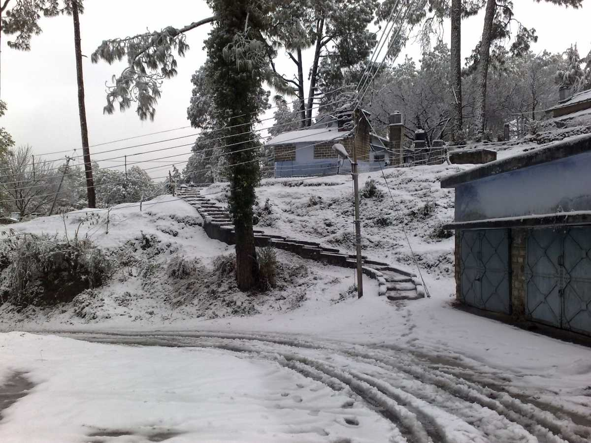 Snowfall in Ranikhet