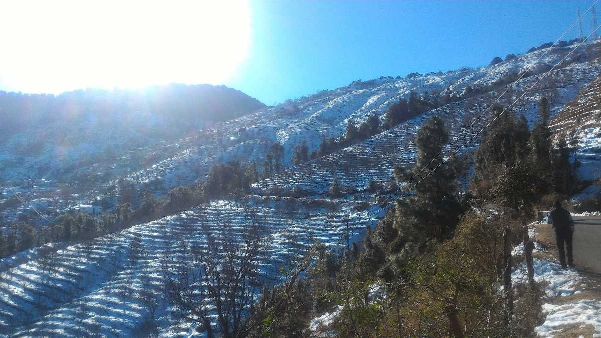 Snow in terrace farming
