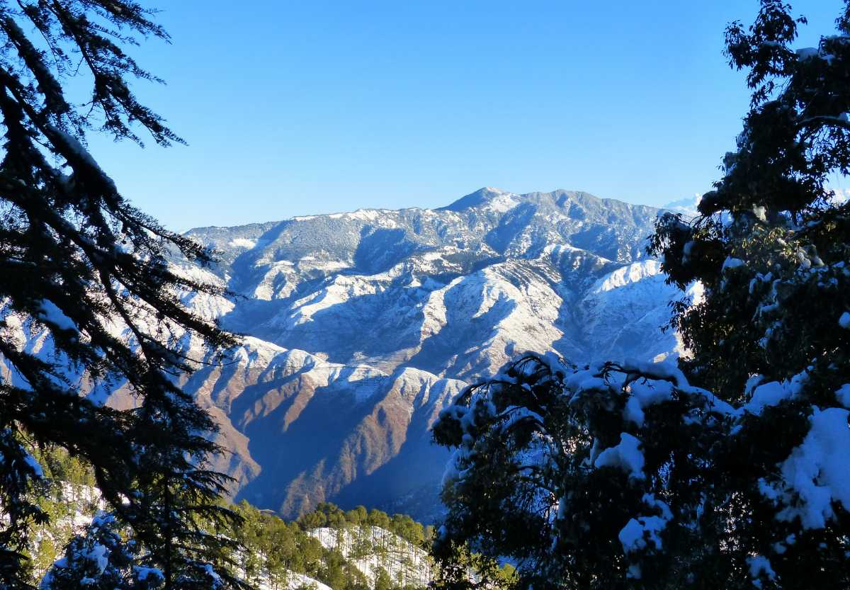 Nag Tibba Trek, Easy Treks in Uttarakhand and Himachal Pradesh