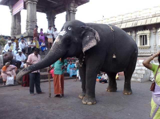 History of Srikalahasti