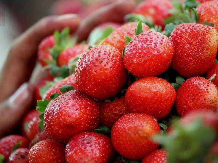 Mahabaleshwar Strawberries