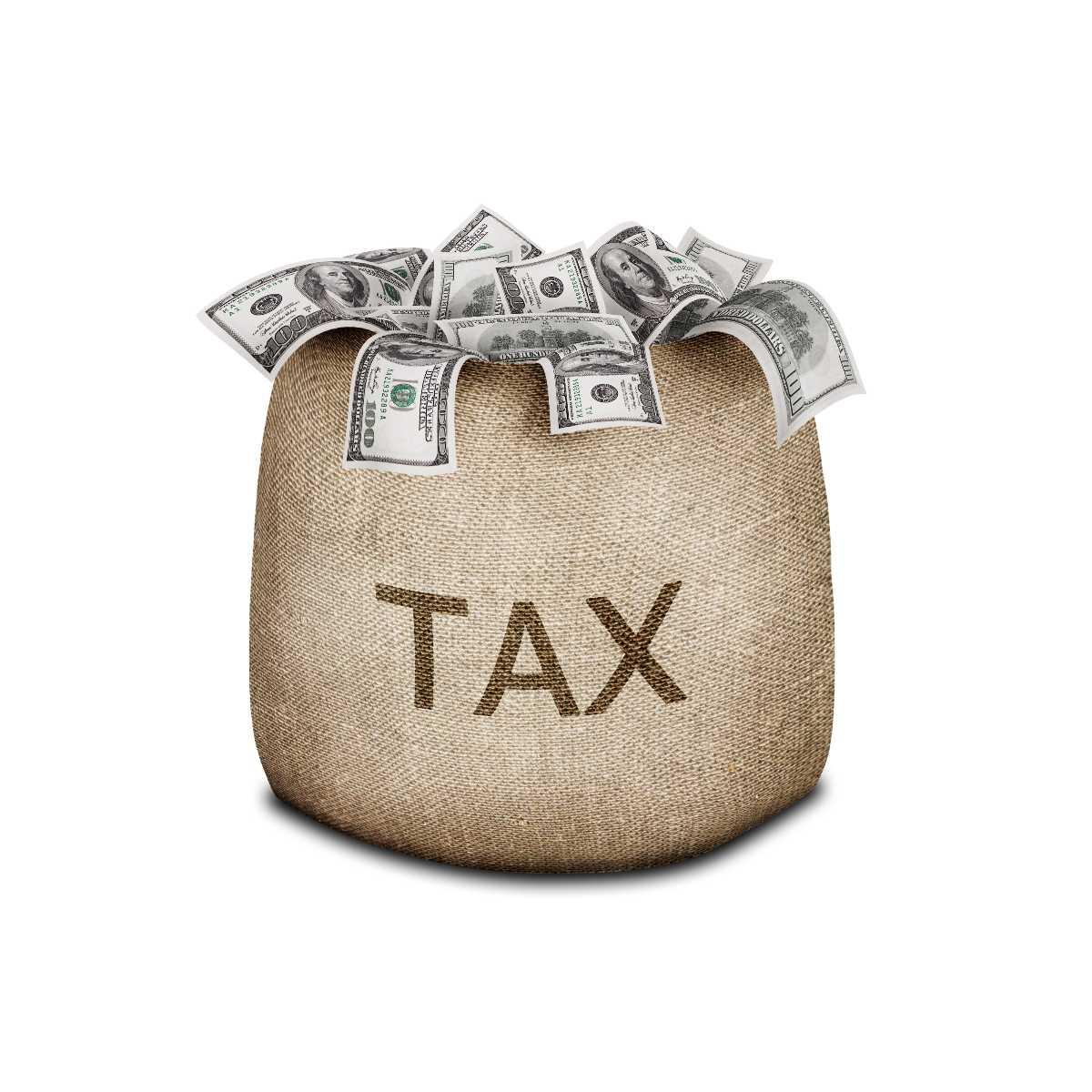 Tax Bag