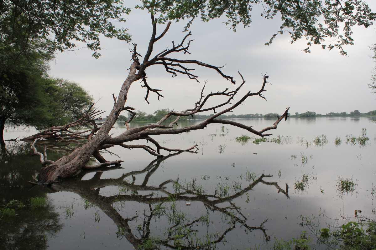 Thol Lake