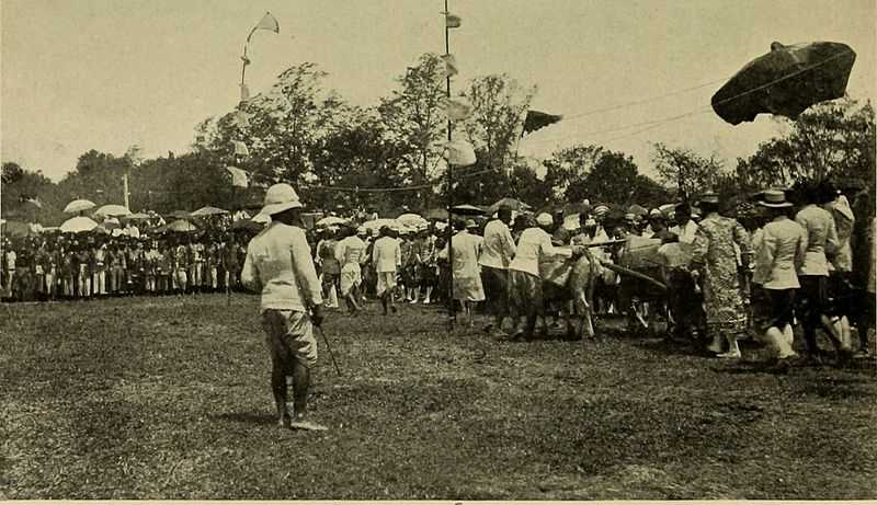 Royal Ploughing Ceremony in the Kingdom of Siam, Ploughing Festival