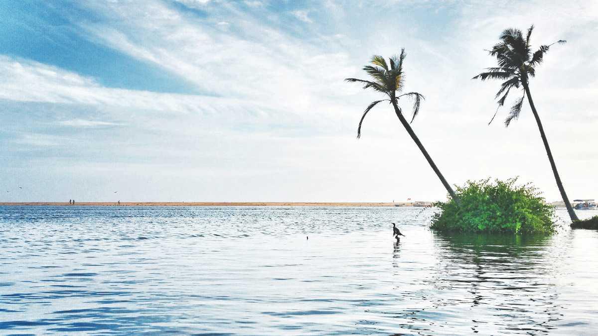 Backwaters of Kerala, Thiruvallam