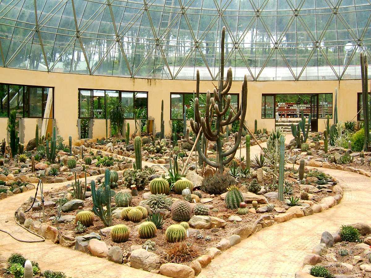 Garden in Ba Vi National Park Vietnam
