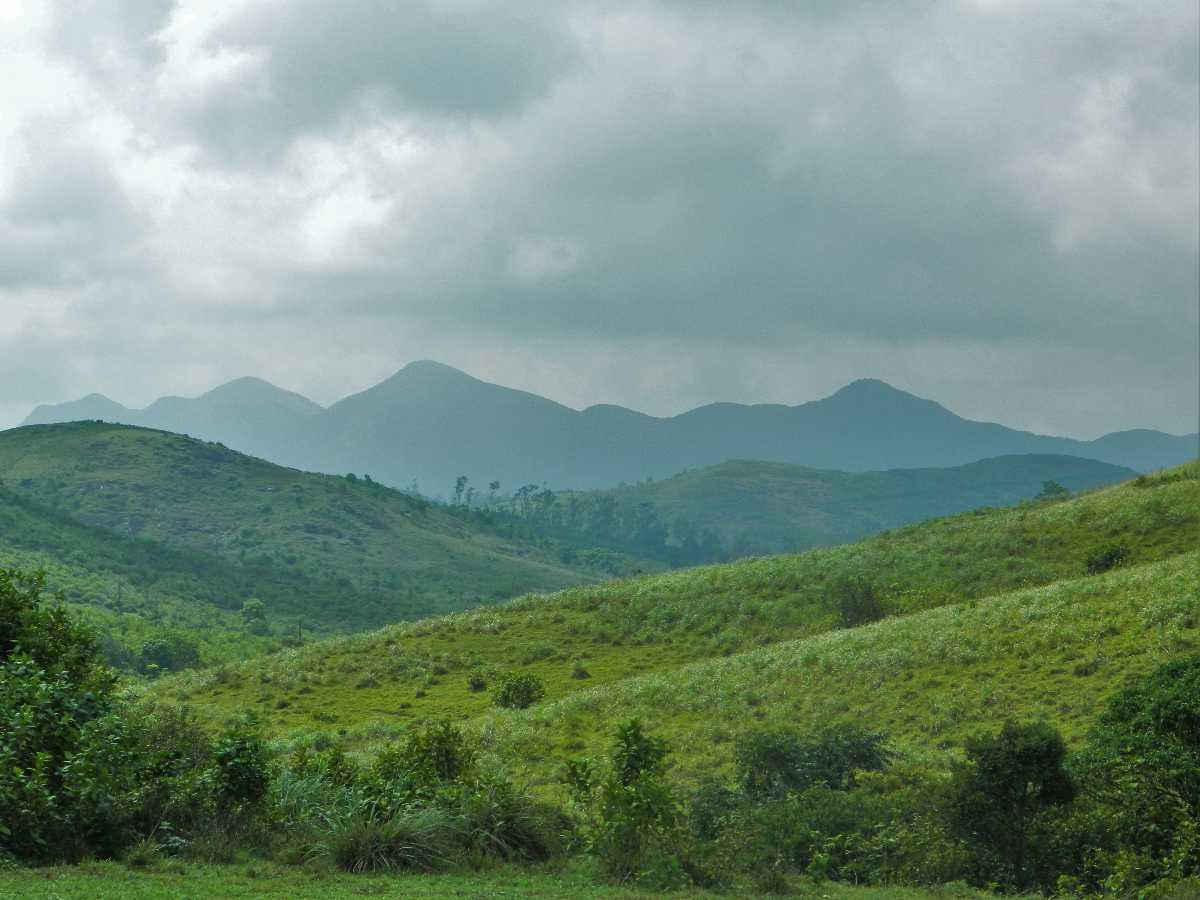 Western Ghats seen from Vagamon