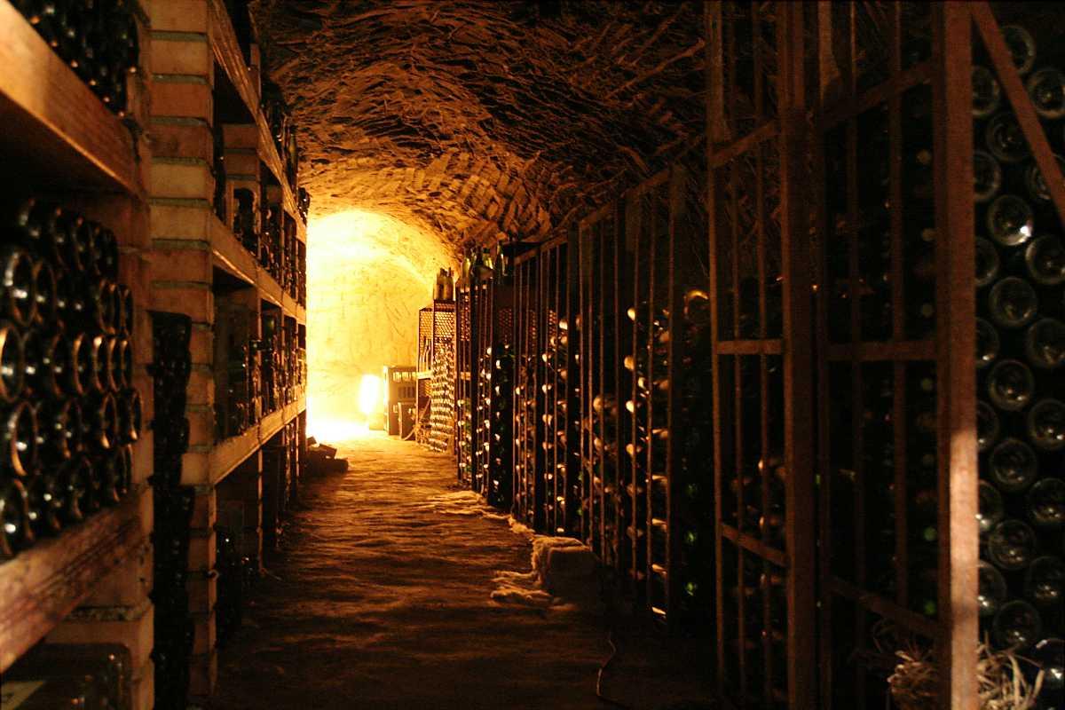 wine cellar, naschmarkt