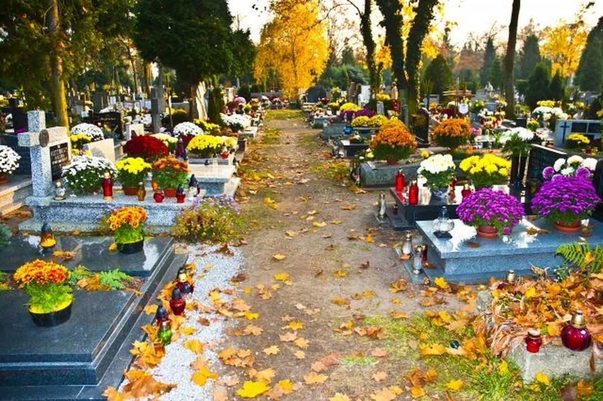 Spending The Night In Cemetery In Chile