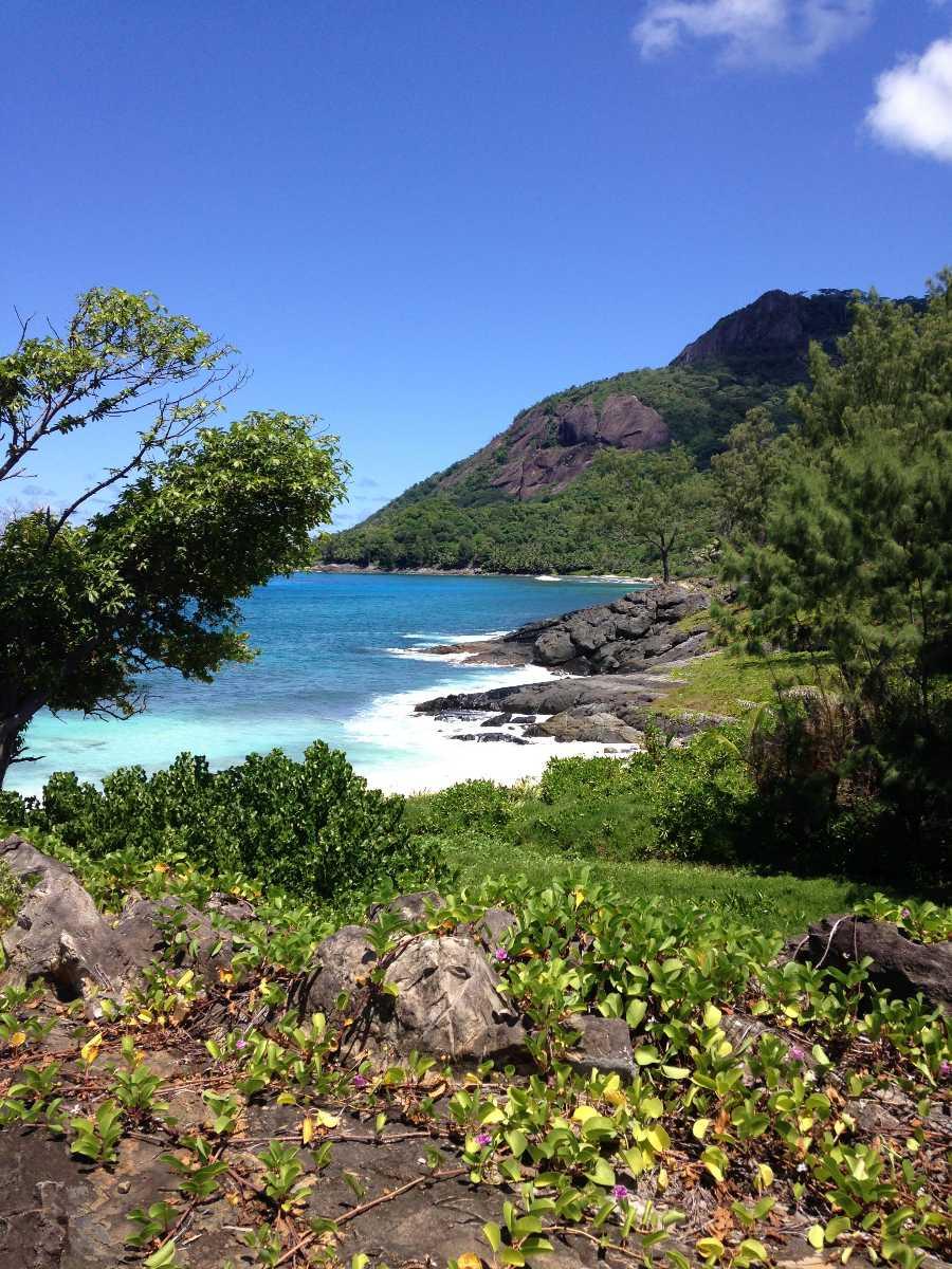 Ramasse Tout at Silhouette Island Seychelles