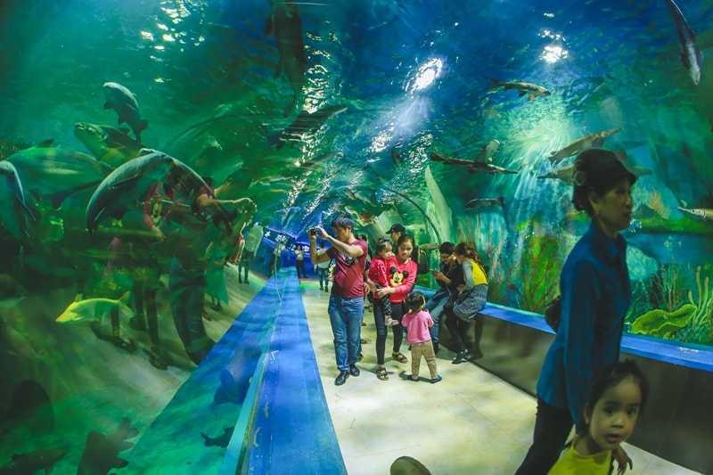 Aquarium at Bao Son Paradise Park Hanoi Vietnam