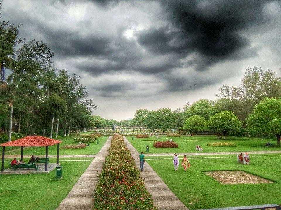 Terraced Garden Chandigarh Terraced Garden Photos And