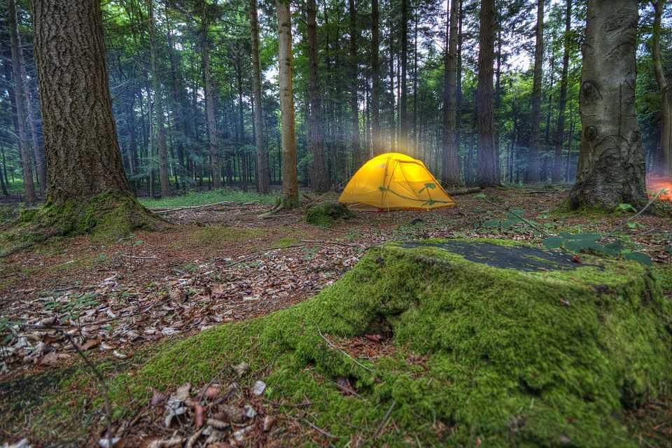 https://www.holidify.com/images/cmsuploads/compressed/campingnature_20190521013130.jpg