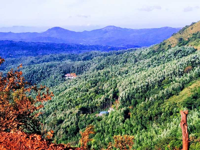 The Green-Clad Hills of Chikmagalur