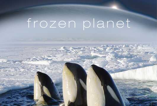 Frozen Planet, travel documentaries