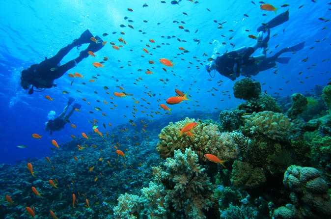 Scuba diving, Mauritius in December