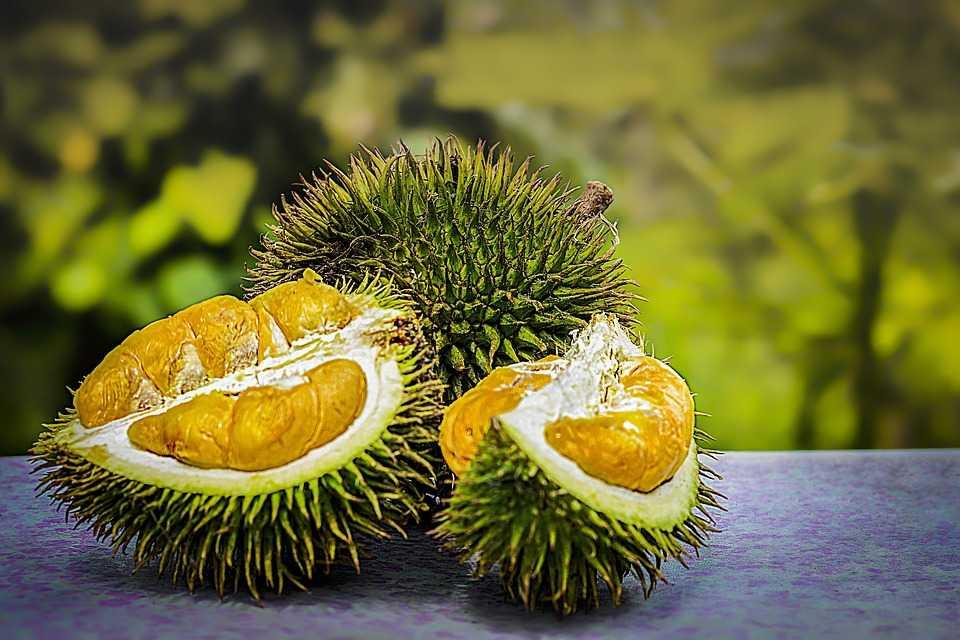 Durian, Street Food in Kuala Lumpur