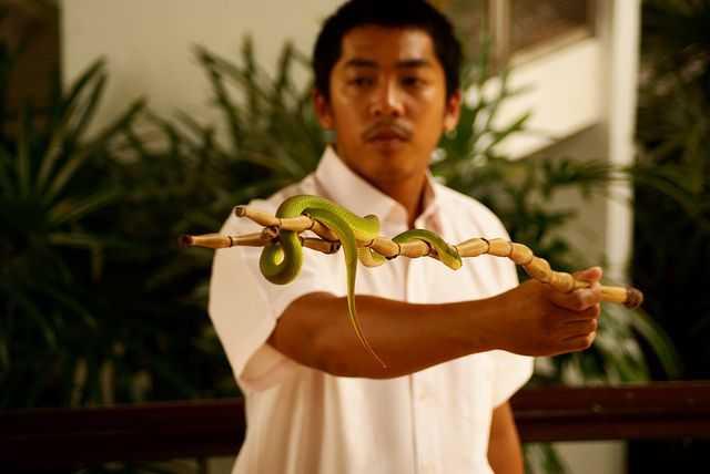 Snake Handler at Snake Farm Bangkok
