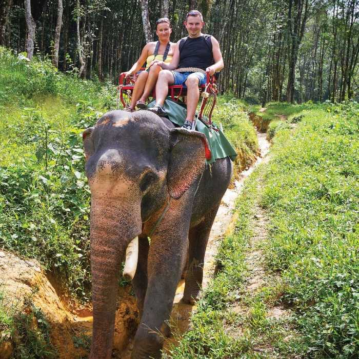Samui Elephant Sanctaury, Family Places in Koh Samui