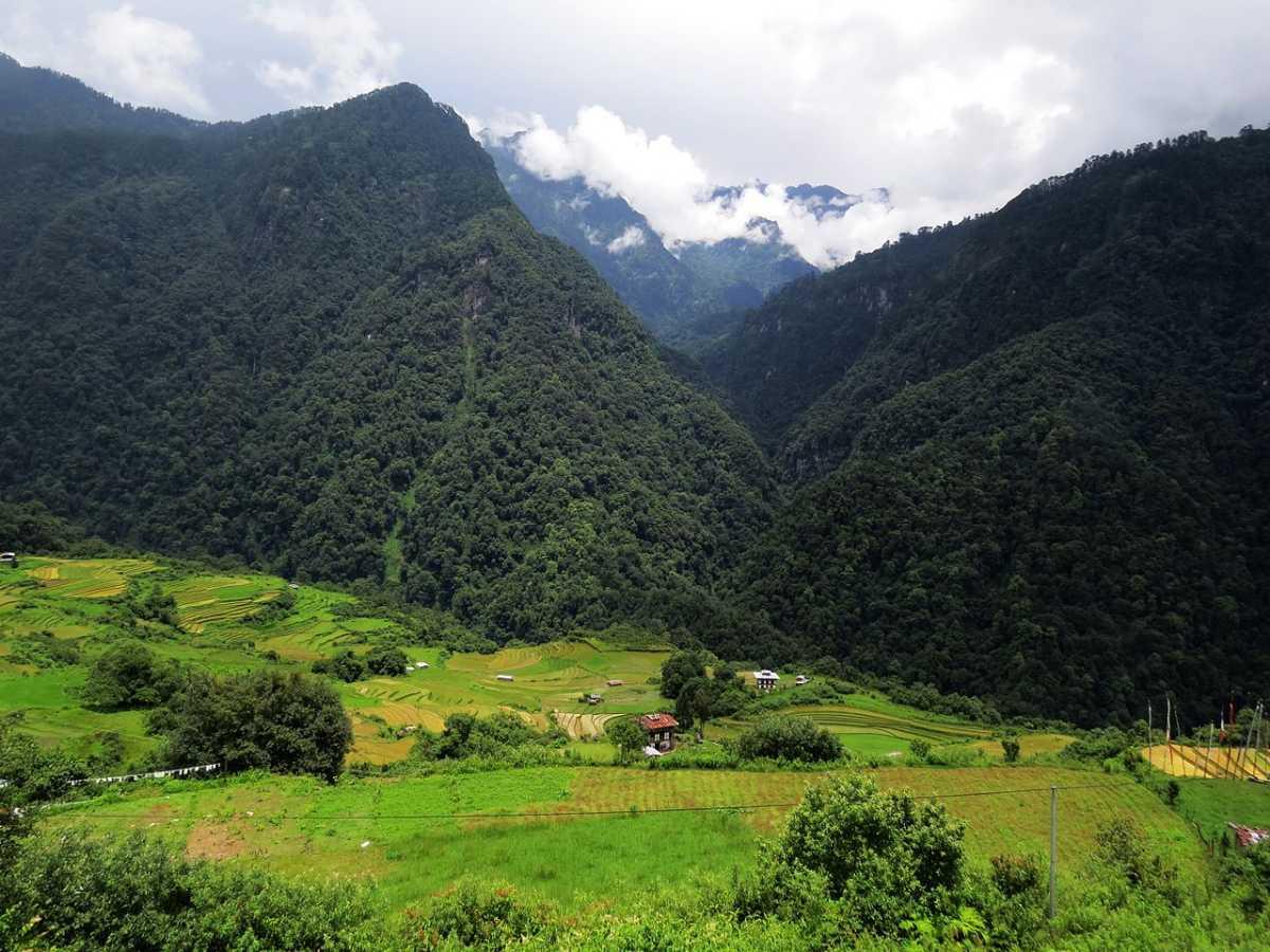 Biodiversity of Bhutan