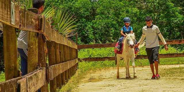 Pony ride at Domaine de L'etoile