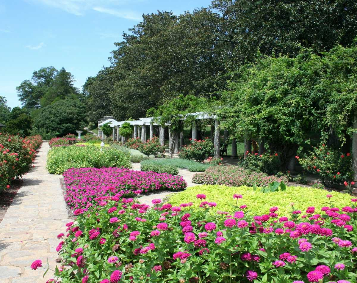 Flower beds in the Park