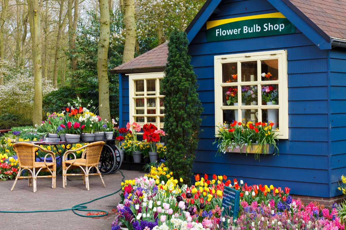 Flower bulb shop at Keukenhof