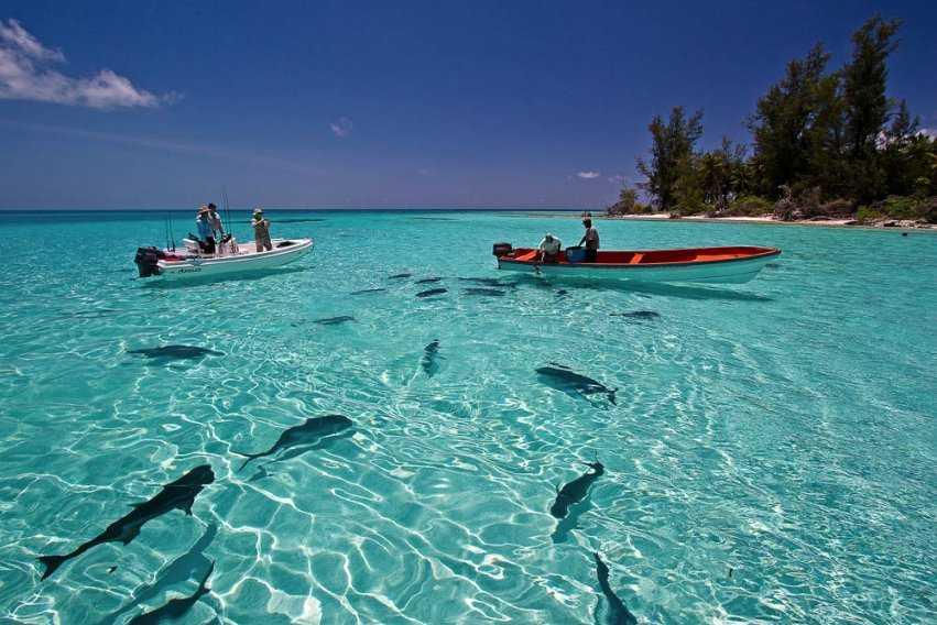 Farquhar Atoll, Fly Fishing in Seychelles