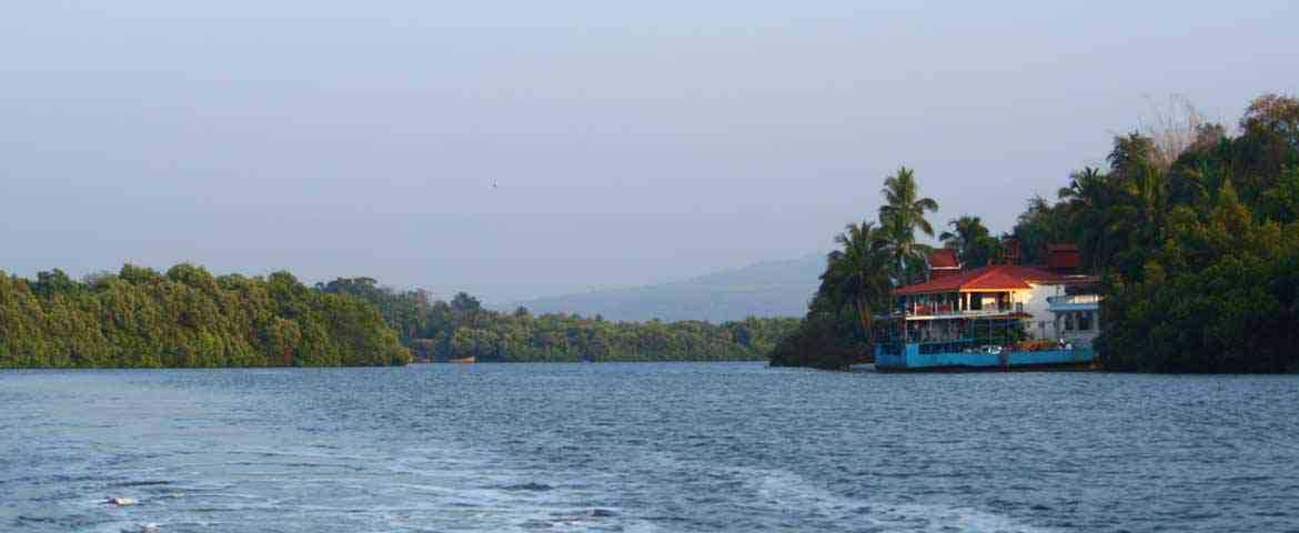 Backwater Cruise in Goa