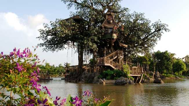 Tarzan's Treehouse at Hong Kong Disneyland