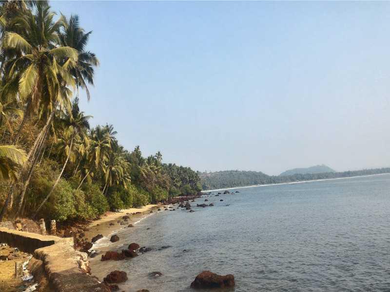 Hollant Beach Goa Restaurants Resorts Holidify