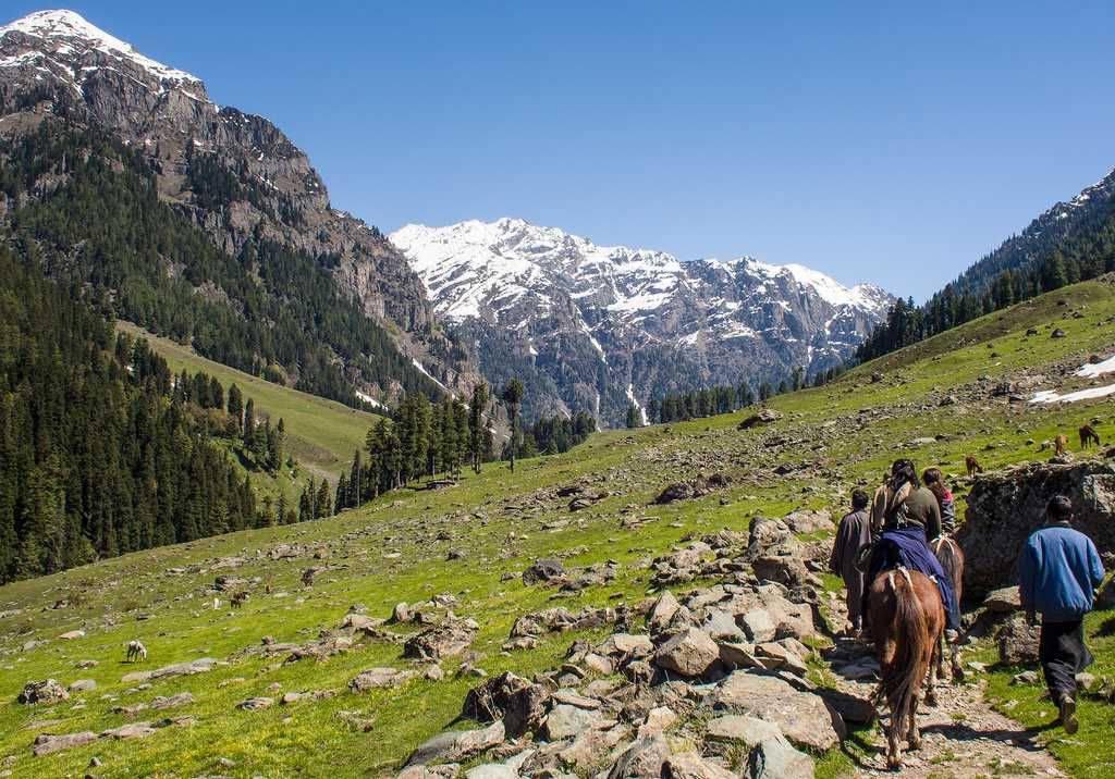 Horse Riding In India at Jammu and Kashmir Horse Riding