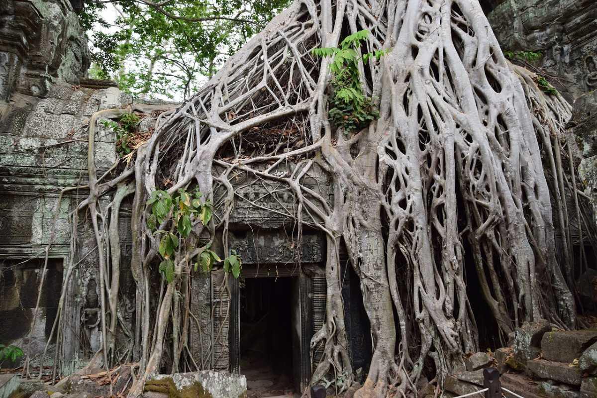 Set in Angkor Wat for Lara Croft: Tomb Raider