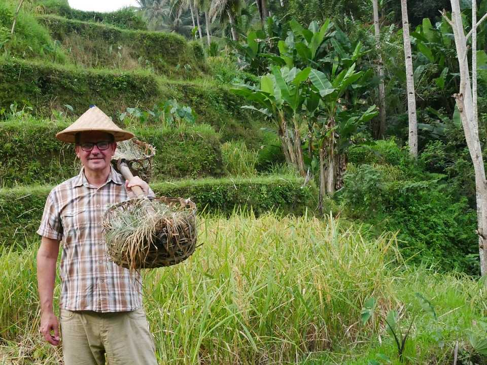 Tourist in a Straw Hat at Tegalalang Rice Terraces Ubud Bali