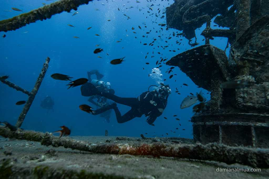 Japanese Garden, Dive Sites Near Koh Tao