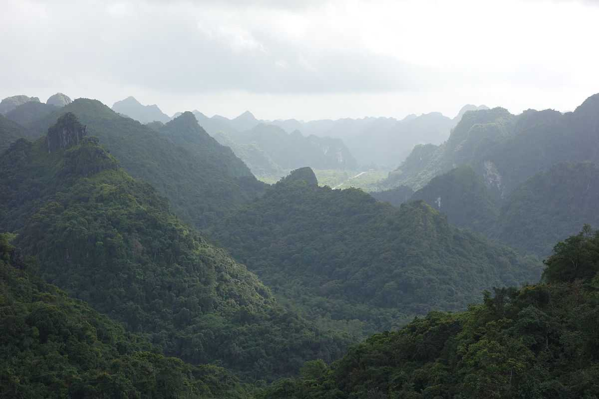 Cat Ba National Park in Vietnam