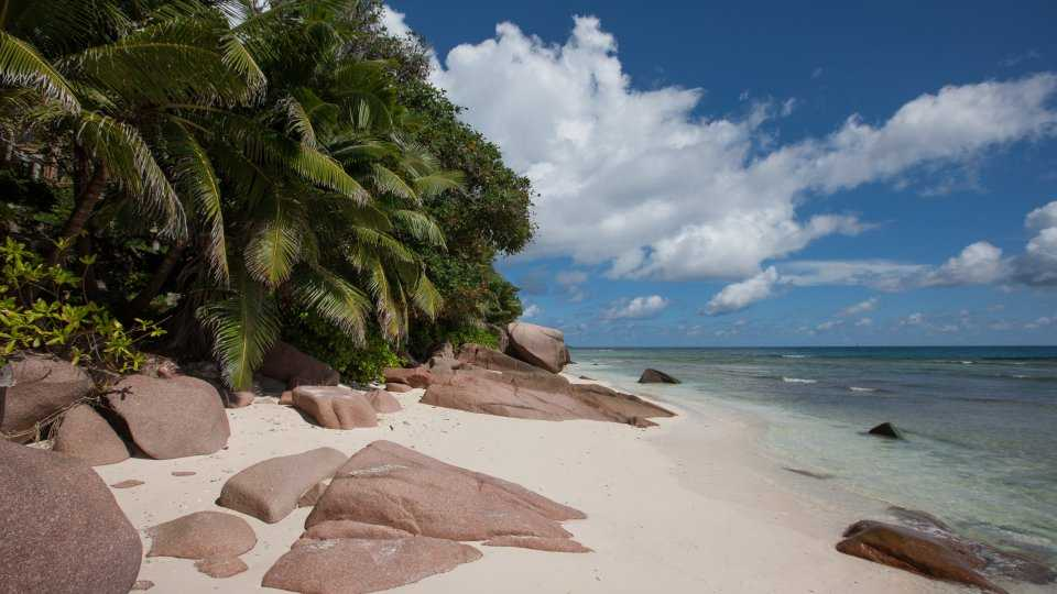 Anse Gaulettes, Snorkelling in La Digue
