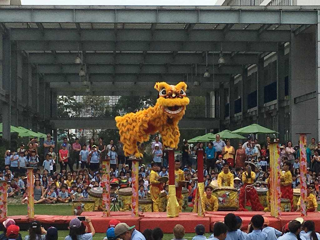 Culture of Vietnam, Lion Dance