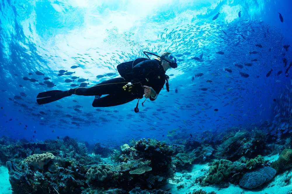 Best Diving Sites