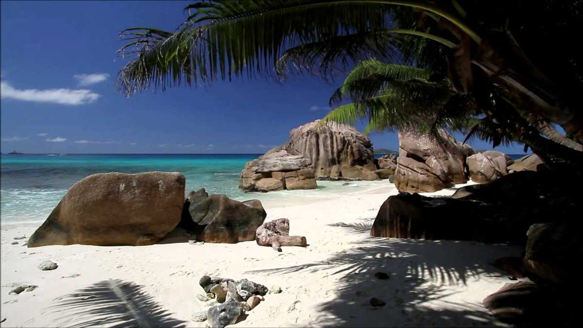 Anse Patates, Snorkelling in La Digue