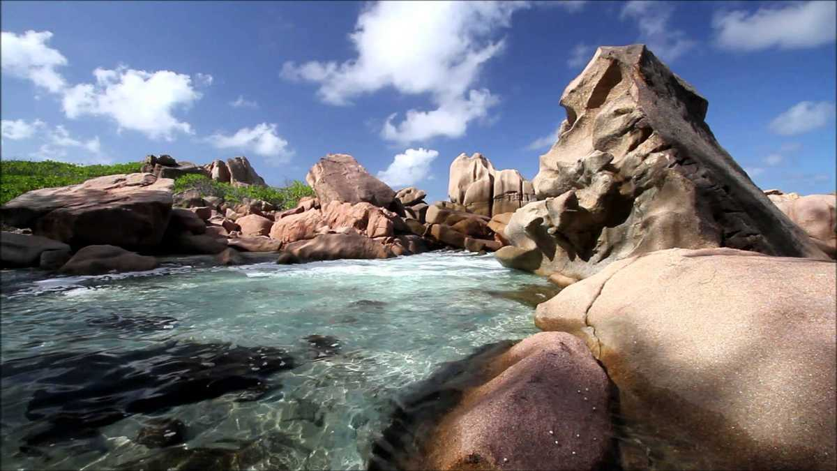 Anse Caiman, Snorkelling in La Digue