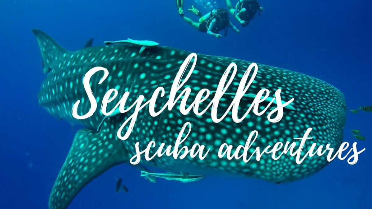 Seychelles Scuba Diving