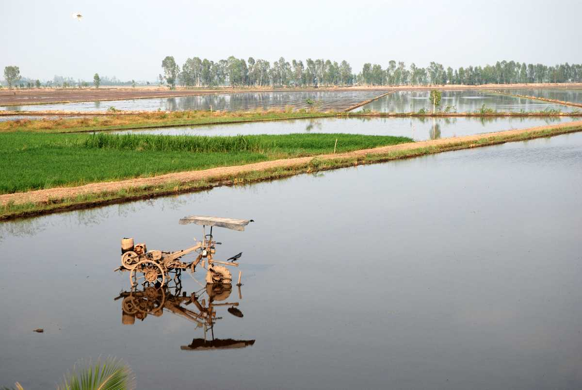 Mekong Delta, Landscape of Vietnam