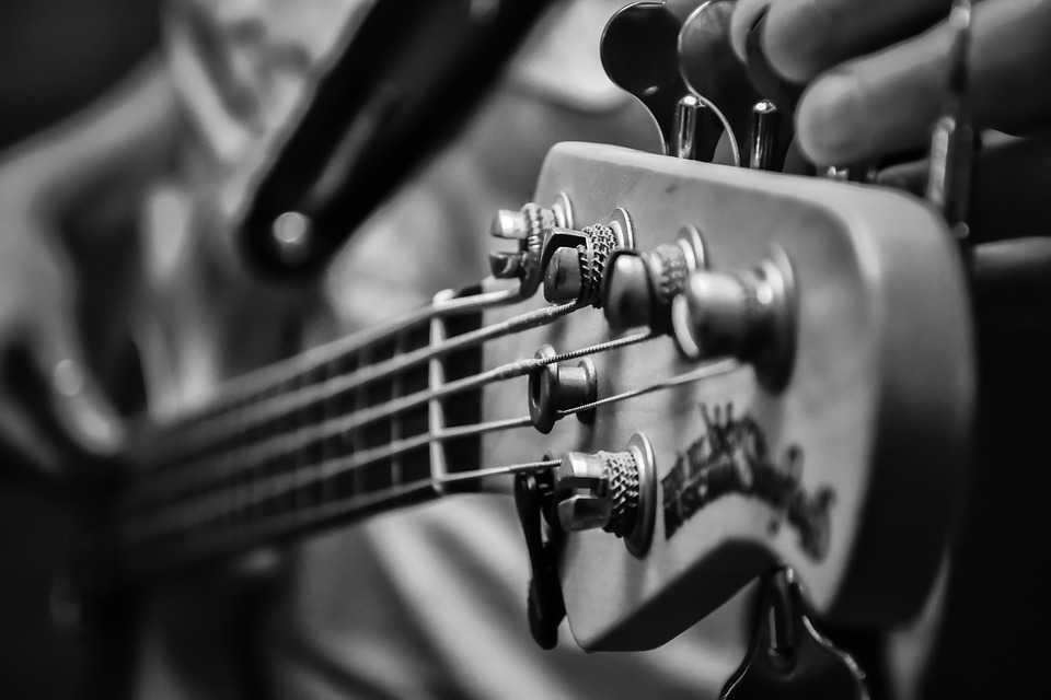 Music, Ziro Music Festival