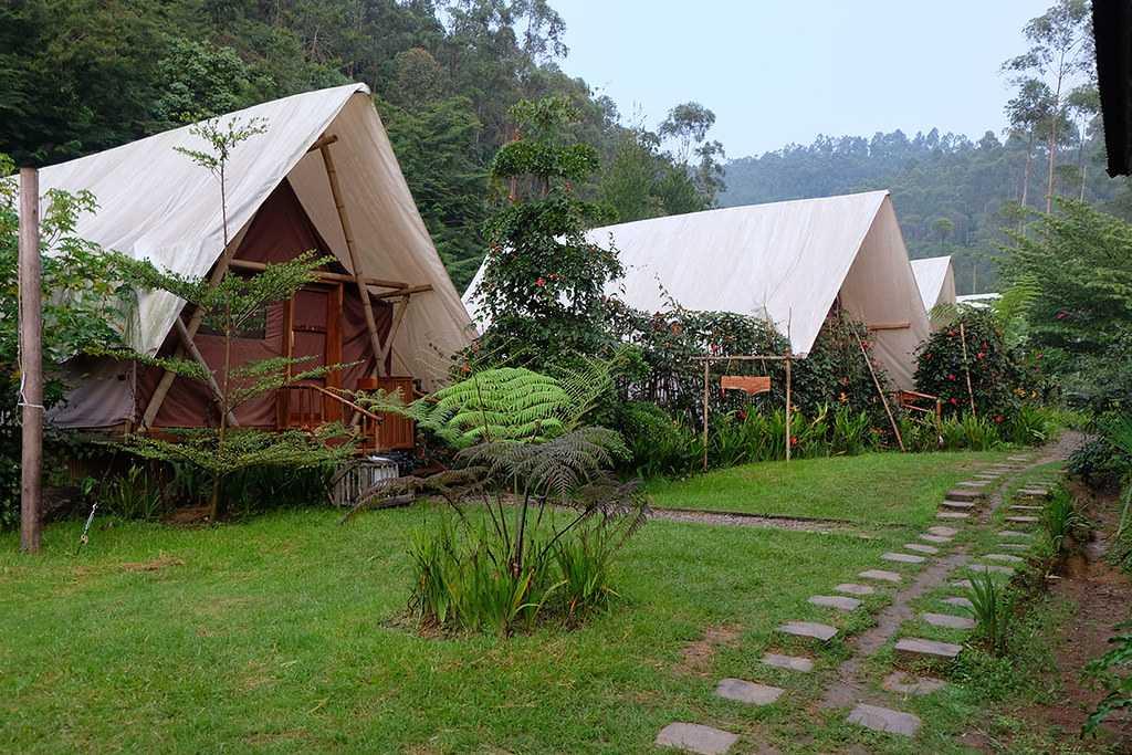 Kohima Camp
