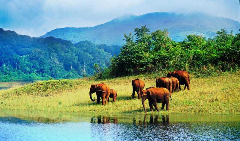 agasthyamalai biosphere reserve
