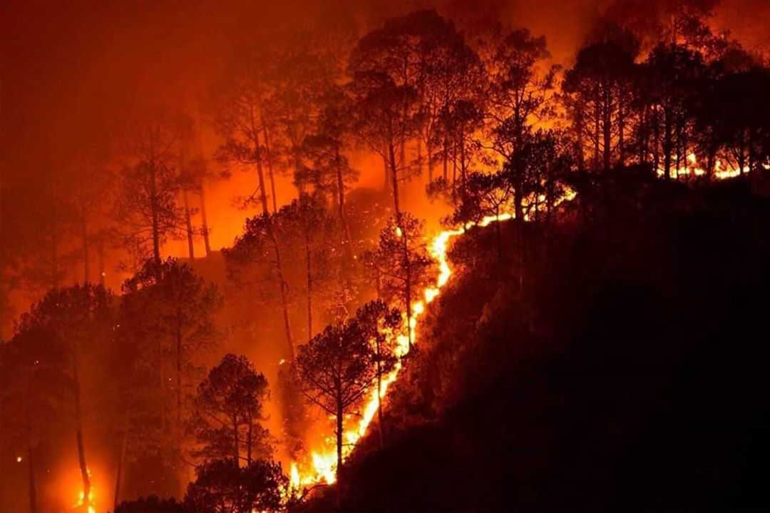 10 Natural Disasters in 2021 That Shook the Entire World